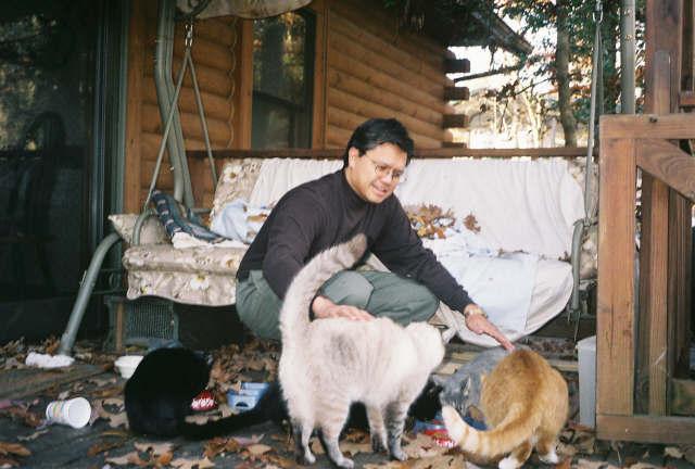 Feeding the felines.